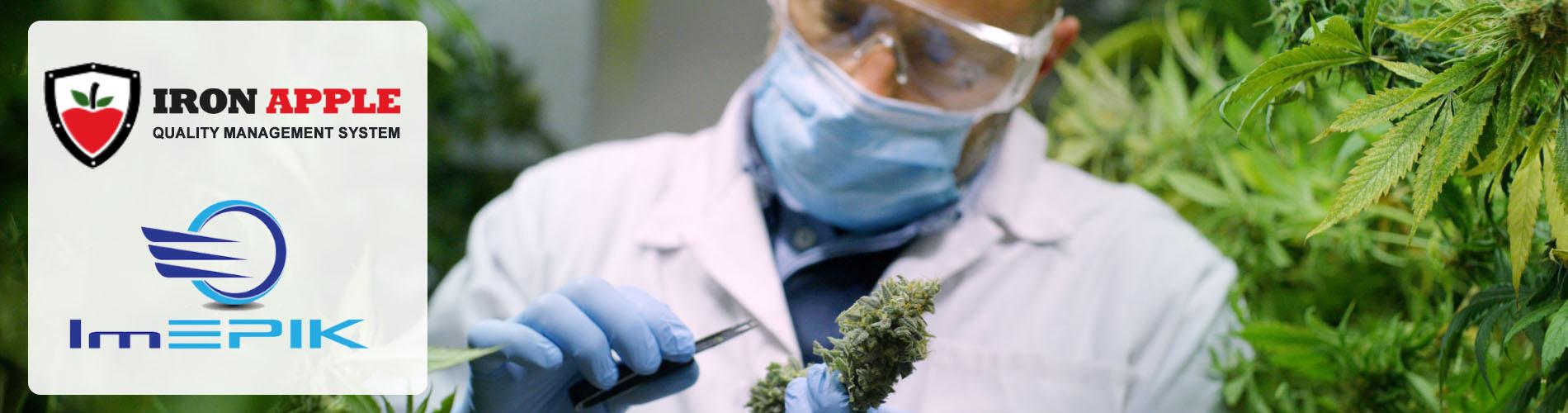 Iron Apple QMS for Cannabis Production ImEpik Food Safety Training